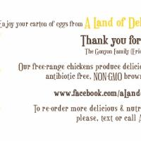 A Land of Delight Logo Design with Egg Carton Label