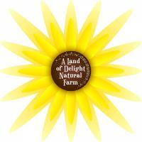 A Land of Delight Logo Design