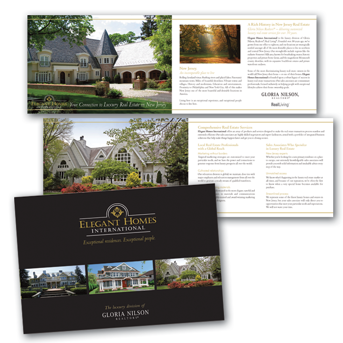 classy brochure design - erika desimone design samples